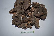 Горец змеиный корень (раковая шейка) 100 грамм