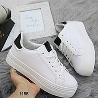 Кеды криперы женские / кроссовки на платформе белые с черной пяточкой, фото 1