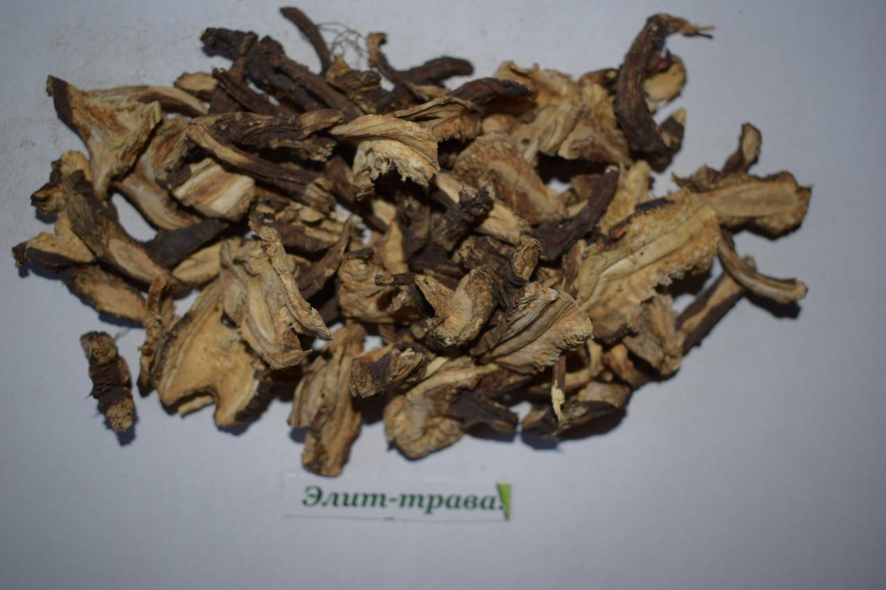Дягиль корень 50 грамм