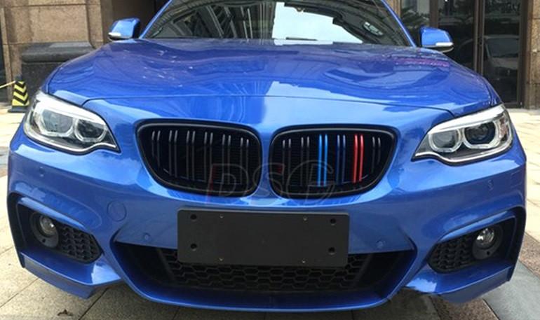 Решетка радиатора BMW F22 ноздри стиль M2 (глянц + колор)