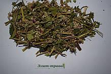 Цветы гречки 50 грамм