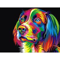 """Картина по номерам """"Радужный пёс"""" 30Х40см Babylon VK003"""