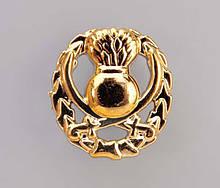 Эмблема общевойсковая КАПУСТА (золотистая )