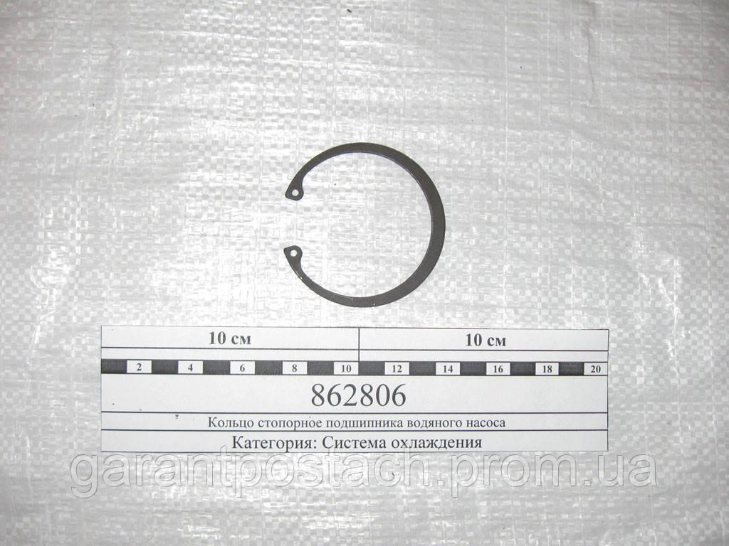 Кольцо стопорное подшипника водяного насоса КамАЗ (D=66мм) 862806