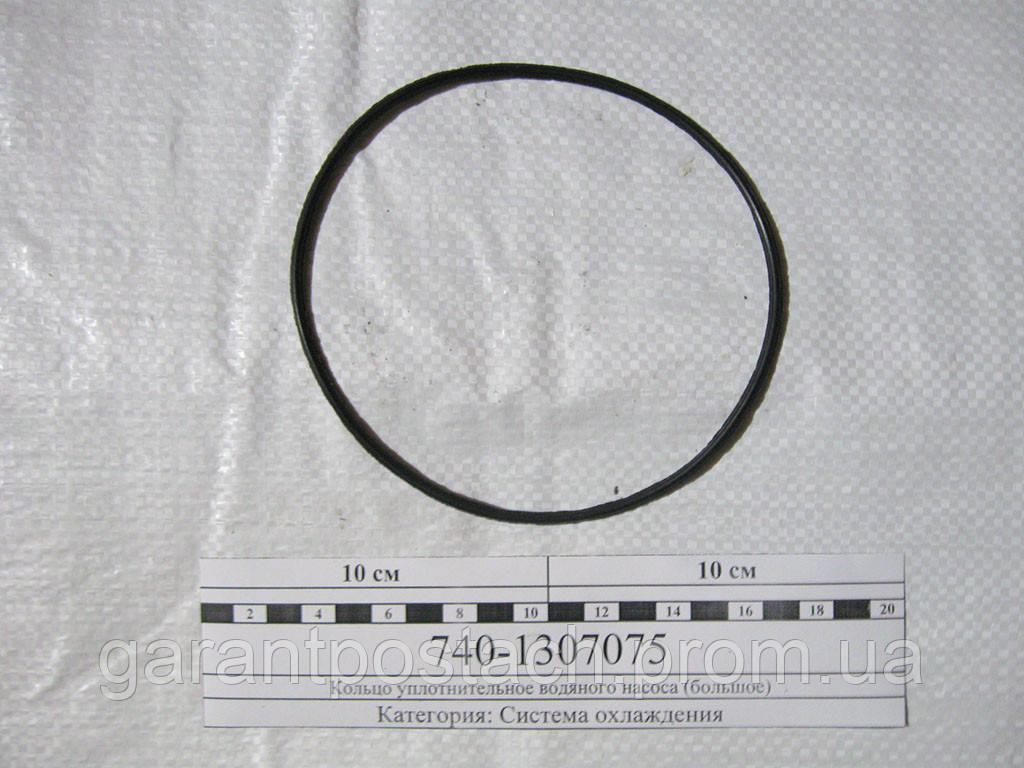 Кольцо уплотнительное водяного насоса КамАЗ (большое) 740.1307075