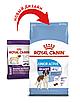 Корм для активных собак гигантских пород Royal Canin GIANT JUNIOR ACTIVE 15 кг, фото 3