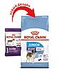 Корм для щенков гигантских пород от 8 мес Royal Canin GIANT JUNIOR 3,5 кг, фото 3