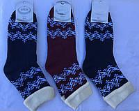 Носки женские махровые стрейчевые™Эко, фото 1