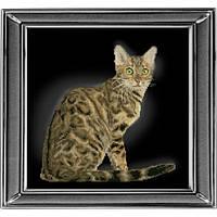 """""""Бенгальская кошка"""" панорамная вышивка. Набор для вышивания нитками"""