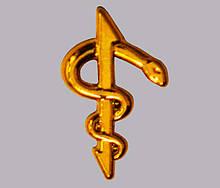 Емблема медичної і ветеринарної служби (золотиста) нового зразка