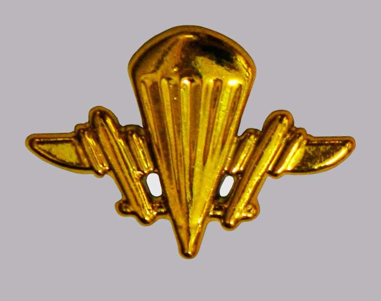 Эмблема аэромобильных войск (золотистая)нов образца.