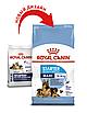 Корм для  щенков и кормящих собак крупных пород Royal Canin MAXI STARTER 4 кг, фото 3