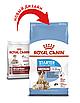 Корм для  щенков и кормящих собак Royal Canin MEDIUM STARTER 1 кг, фото 3
