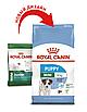 Корм для щенков  маленьких пород  Royal Canin MINI PUPPY 8 кг, фото 3