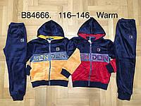 Велюровый утепленный костюм 2 в 1 для мальчика оптом, Grace, 116-146 см,  № B84666, фото 1