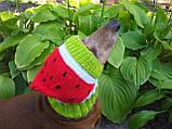 Кавун Шапка для собаки,шапка для такси,одяг для домашніх тварин, фото 5