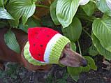 Кавун Шапка для собаки,шапка для такси,одяг для домашніх тварин, фото 8