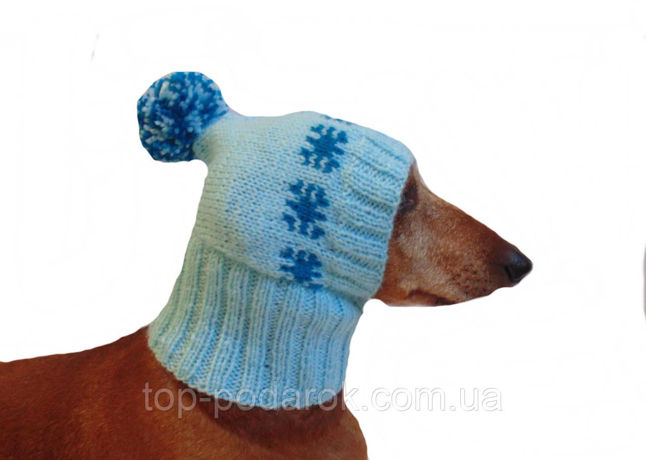 Шапка для собаки,шапка для такси,одяг для домашніх тварин