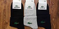 """Чоловічі стрейчеві шкарпетки в стилі """"Lacoste W"""" Туреччина 41-45"""