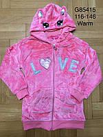 Пайта велюровая утепленная для девочек оптом, Grace, 116-146 см,  № G85415, фото 1