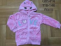 Пайта велюровая утепленная для девочек оптом, Grace, 116-146 см,  № G85414, фото 1