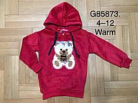 Толстовка велюровая утепленная для девочек оптом, Grace, 4-12 лет,  № G85873, фото 1
