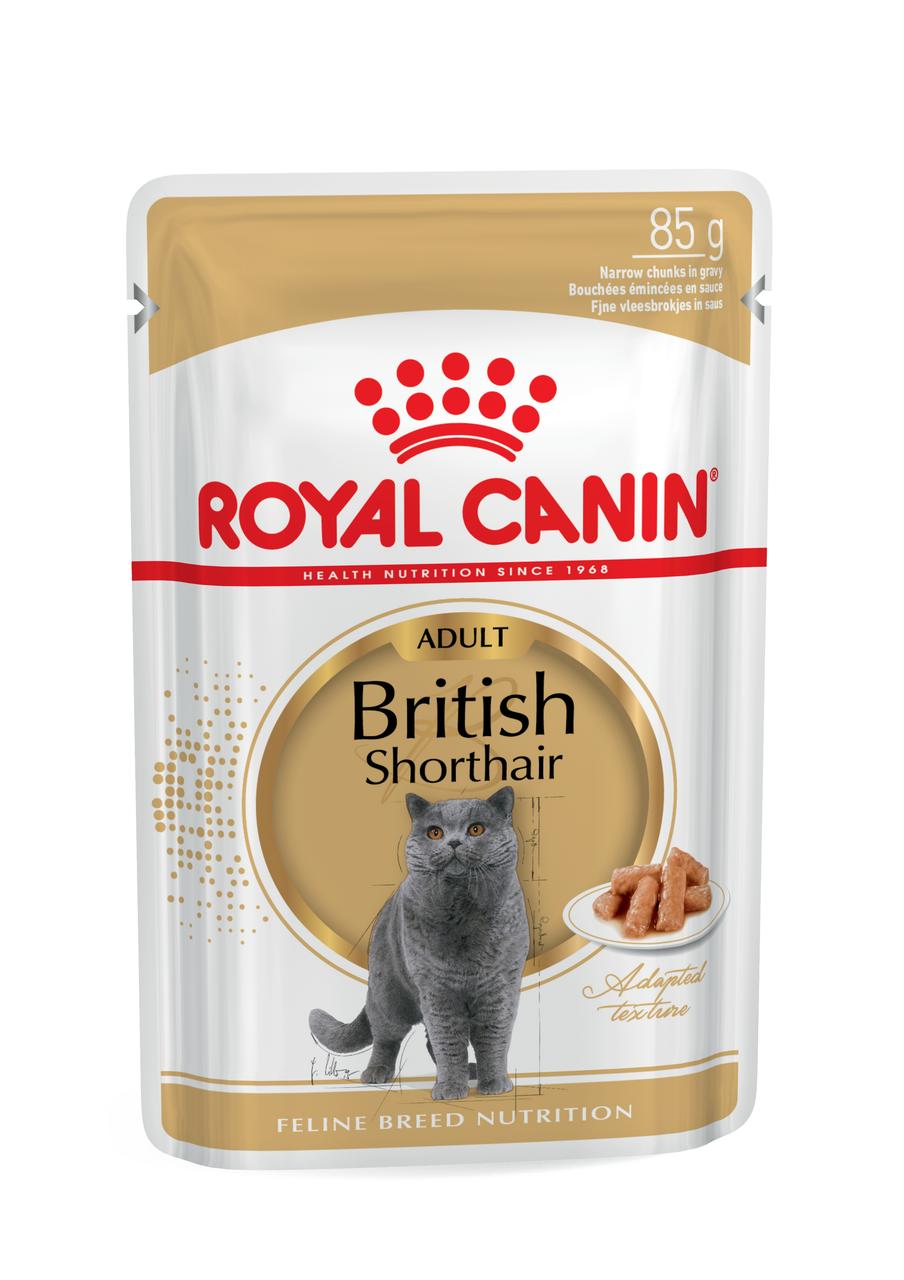 Корм для кошек породы британская короткошерстная Royal Canin BRITISH SHORTHAIR ADULT 0,085 кг