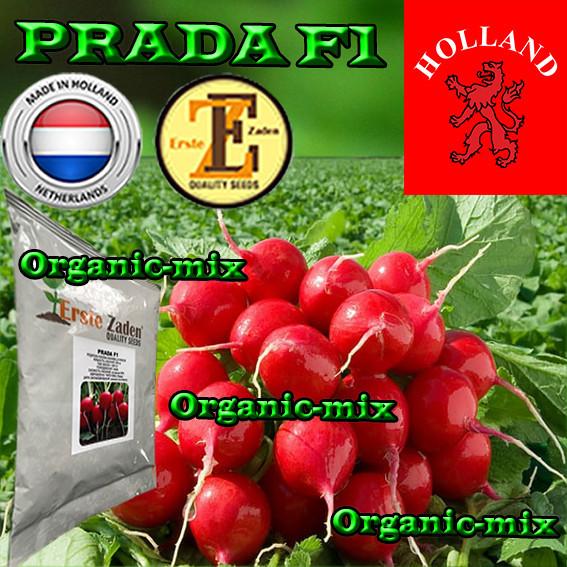 Семена, редис ПРАДА F1 / PRADA F1, ТМ ERSTE ZADEN, обработанные, 1000 грамм