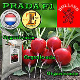 Семена, редис ПРАДА F1 / PRADA F1, ТМ ERSTE ZADEN, обработанные, 1000 грамм, фото 2
