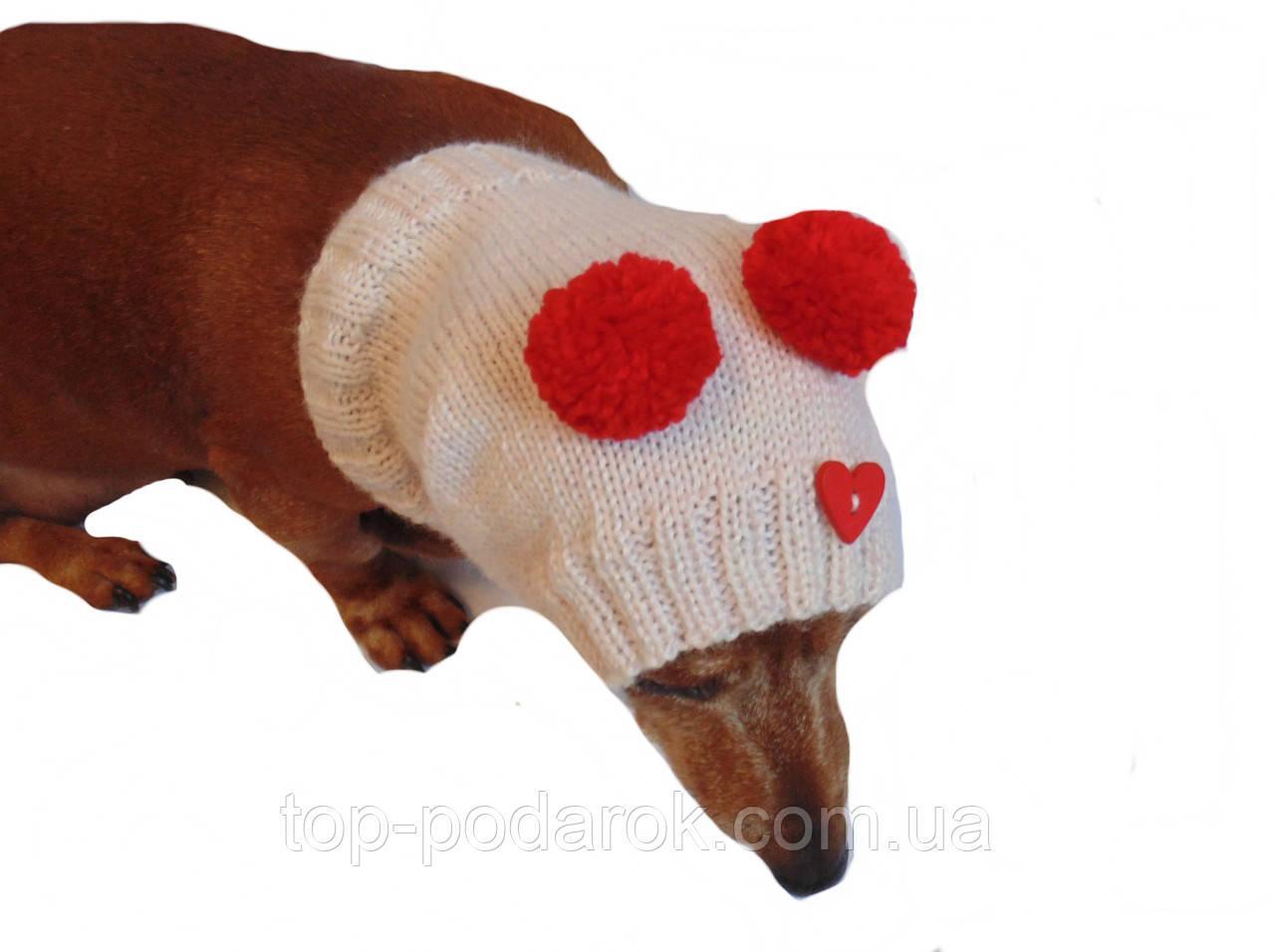 Шапка-снуд для маленькой собаки,шапка для таксы,шапка для собаки до 10 кг