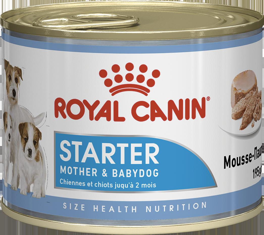 Корм для щенков и кормящих собак Royal Canin STARTER MOUSSE 0,195 кг