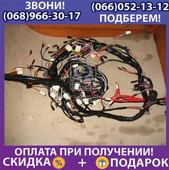 Пучок проводов передний (пр-во Россия) (арт. 55102-3724010)