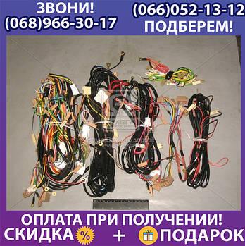 Электропроводка ГАЗ 3307 низковольтная (пр-во Украина) (арт. 3307-3724000)