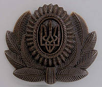 Кокарда офицерская аэромобильных войск и ВВС       ( хаки)