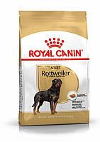 Сухой корм Роял Канин Royal Canin ROTTWEILER ADULT для собак породы ротвейлер 3 кг