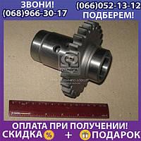 Шестерня привода насоса гидравлики МТЗ 890,900 (пр-во МЗШ) (арт. 80-4604032-А)