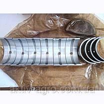 Вкладыши коренные  А-41 АО20-1, ЗПС г. Тамбов, фото 2