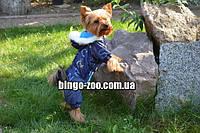 Комбинезон костюм для собаки  Забава, фото 1