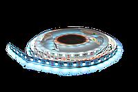 Светодиодная лента UkrLed SMD5050 60d/m IP33 (RGBW) (20631)