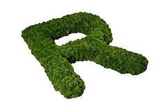 Буквы из мха от Artis Green. Свежие и яркие - 5-8 лет!