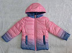 Детская демисезонная куртка для девочки (цвет омбре) (Венгрия)