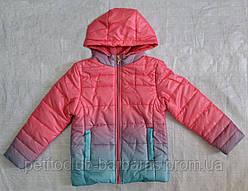 Детская демисезонная куртка для девочки (цвет омбре)