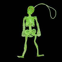 Скелет резиновый 12см светонакопительный