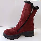 Сапожки женские зимние на широком каблуке из натуральной замши от производителя модель ДИС779-2, фото 2