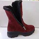 Сапожки женские зимние на широком каблуке из натуральной замши от производителя модель ДИС779-2, фото 3