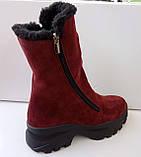 Сапожки женские зимние на широком каблуке из натуральной замши от производителя модель ДИС779-2, фото 4