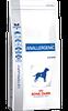 Лечебный корм Royal Canin Anallergenic для собак 3 кг.