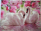 Алмазная вышивка белые лебеди, полная выкладка 30х40 см, фото 4