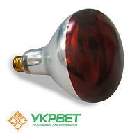 Инфракрасная лампа 175 Вт для обогрева животных, тонкое закаленное стекло с защитной пленкой, Bongbada