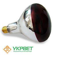 Инфракрасная лампа 175 Вт для обогрева животных, закаленное стекло, Bongbada, фото 1
